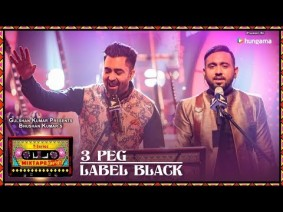3 Peg / Label Black Song Lyrics