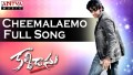 Cheemalemo Chakkara Song Lyrics