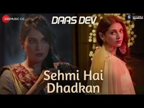 Sehmi Hai Dhadkan Song Lyrics