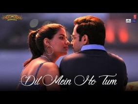 Dil Mein Ho Tum Song Lyrics