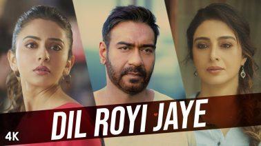 Dil Royi Jaye Song Lyrics