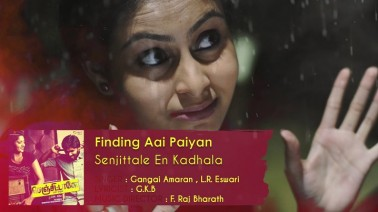 Finding Aai Paiyan Song Lyrics