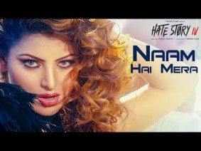 Naam Hai Mera Song Lyrics