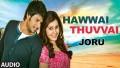 Hawwai Thuvvai Song Lyrics
