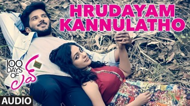Hrudayam Kannulatho Song Lyrics