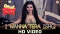 I Wanna Tera Ishq Song Lyrics