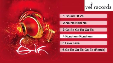 Nene Nani Ne Song Lyrics