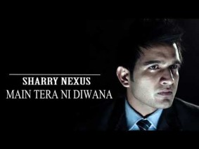 Main Tera Ni Diwana Song Lyrics