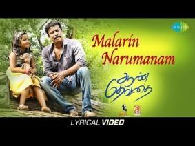 Malarin Narumanam Song Lyrics