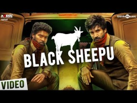 Black Sheepu Song Lyrics