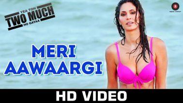 Meri Aawaargi Song Lyrics
