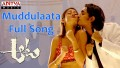 Muddulaata Song Lyrics