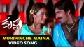 Muripinche Maina Song Lyrics