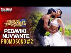 Pedaviki Nuvvante Song Lyrics