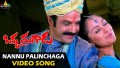 Nannu Paalinchaga Song Lyrics