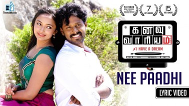 Nee Paadhi Song Lyrics