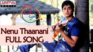 Nenu Thaanani Song Lyrics