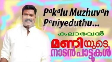 Pakalu Muzhuvan Paniyeduthu Song Lyrics