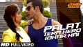 Palat Tera Hero Idhar Hai Song Lyrics