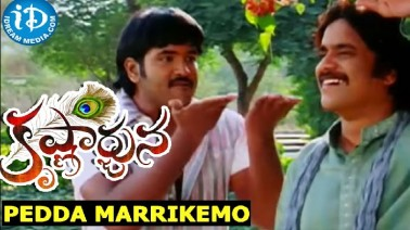Pedda MarriKemo Song Lyrics