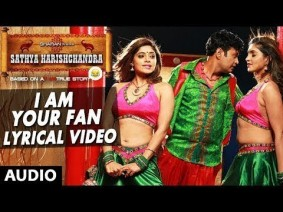 I Am Your Fan Song Lyrics