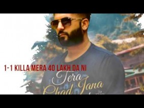 Tera Chad Jana Maarda Song Lyrics