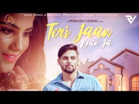 Teri Jaan Ban Ja Song Lyrics