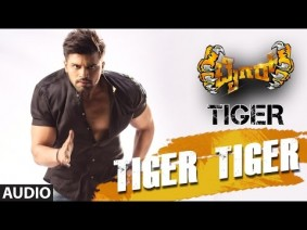 Tiger Tiger Song Lyrics