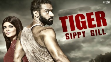 Tiger Punjabi Lyrics