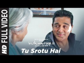Tu Srotu Hai Song Lyrics