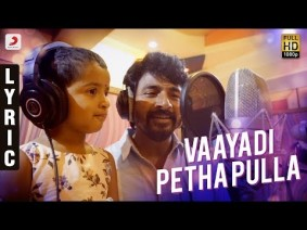 Vaayadi Petha Pulla Song Lyrics