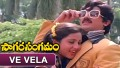 Ve Vela Gopemmala Muvvagopaalude Song Lyrics