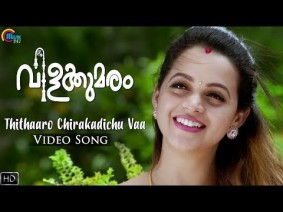 Thithaaro Chirakadichu Vaa Song Lyrics