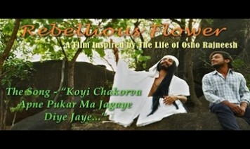 Koyi Chakorva Apne Pukar Ma Jagaye Diye Jaye Song Lyrics