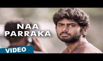 Naa Parakka Song Lyrics