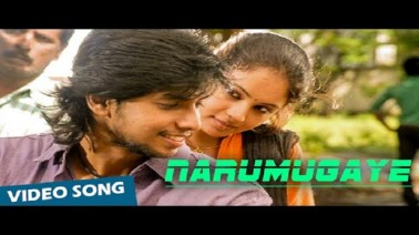 Narumugaye Song Lyrics