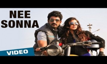 Nee Sonna Song Lyrics