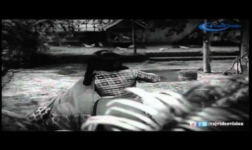 Paal Irukkum Pazham Irukkum Song Lyrics