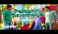 Pallaku Devathaiya Song Lyrics