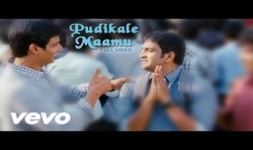 Pudikale Maamu Song Lyrics