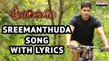 Srimanthuda Song Lyrics
