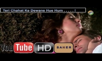 Teri Chahat Ke Diwane Hue Hum Song Lyrics